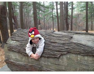 Angry-birds-hat